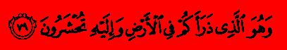 Аль-Му'минун